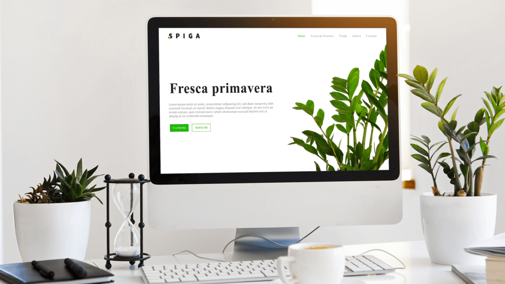 Soluble Branding - Diseño Web E-commerce Spiga